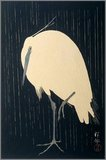 The full title of this beautiful ink-on-paper woodcut is 'Little Egret, Standing on One Leg in the Rain at Night'.<br/><br/>  Originally from Kanazawa, Ohara Matao (1877-1945) studied in Tokyo in the 1890s under the artist Suzuki Koson. Matao later adopted his teacher's surname (a Japanese sign of graduation) and began specializing in woodcuts, most of his subjects chosen from nature. He particularly loved birds, and he designed over 450 wood-carved prints of various birds. Koson changed his name after 1910 to Shoson, and later to Hoson.